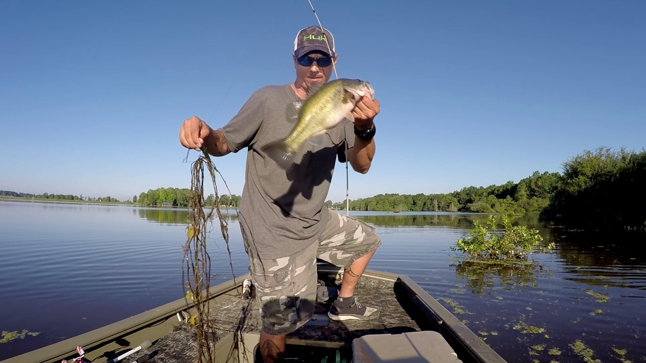 One of those days on toledo bend youtube for California 1 day fishing license