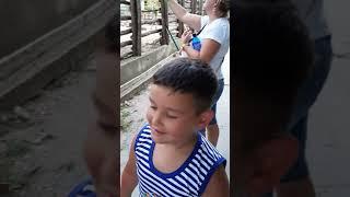 Болгария  Варна зоопарк