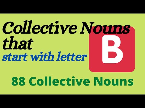 88 Collective Nouns Examples That Start With B