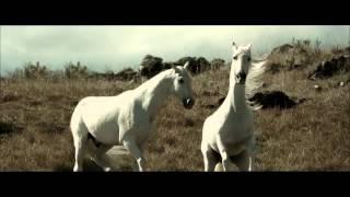 White Horse - Natureza dos Homens [Commercial 2014]