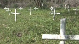 School's unmarked child graves might be exhumed