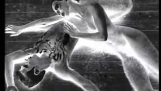 DIE SCHWARZE SONNE von Johannes Hammel - Trailer