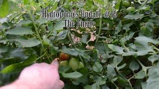 """Hydroponics Update #16 """"The Finale"""""""