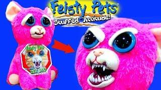 Feisty Pets Angry Cat / フェイスティペット アングリーキャット