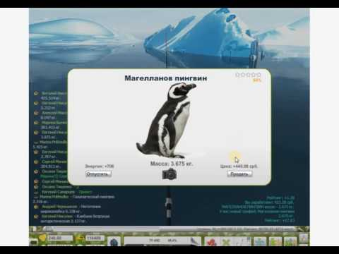 ловлю пингвинов в игре трофейная рыбалка