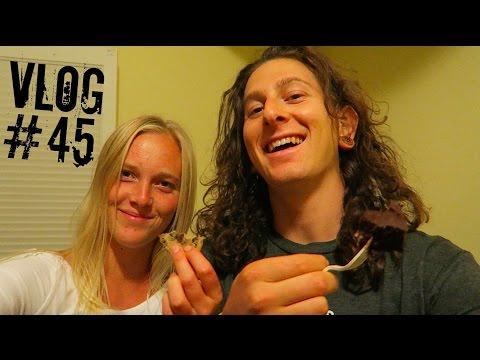 BERKELEY ADVENTURES || Vlog_45