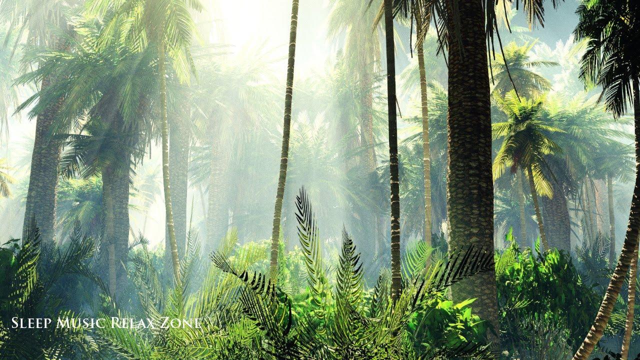 Paseo por la Naturaleza 🌳  Sonidos de la Naturaleza Relajación, Música Zen Sanadora Relajante