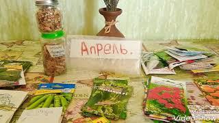 Какие овощи, зелень, летники посеять в АПРЕЛЕ!!??Посылка семян от зрителя моего канала.