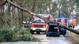 Шесть человек погибли в Голландии и Германии из-за ураганных ветров (новости)