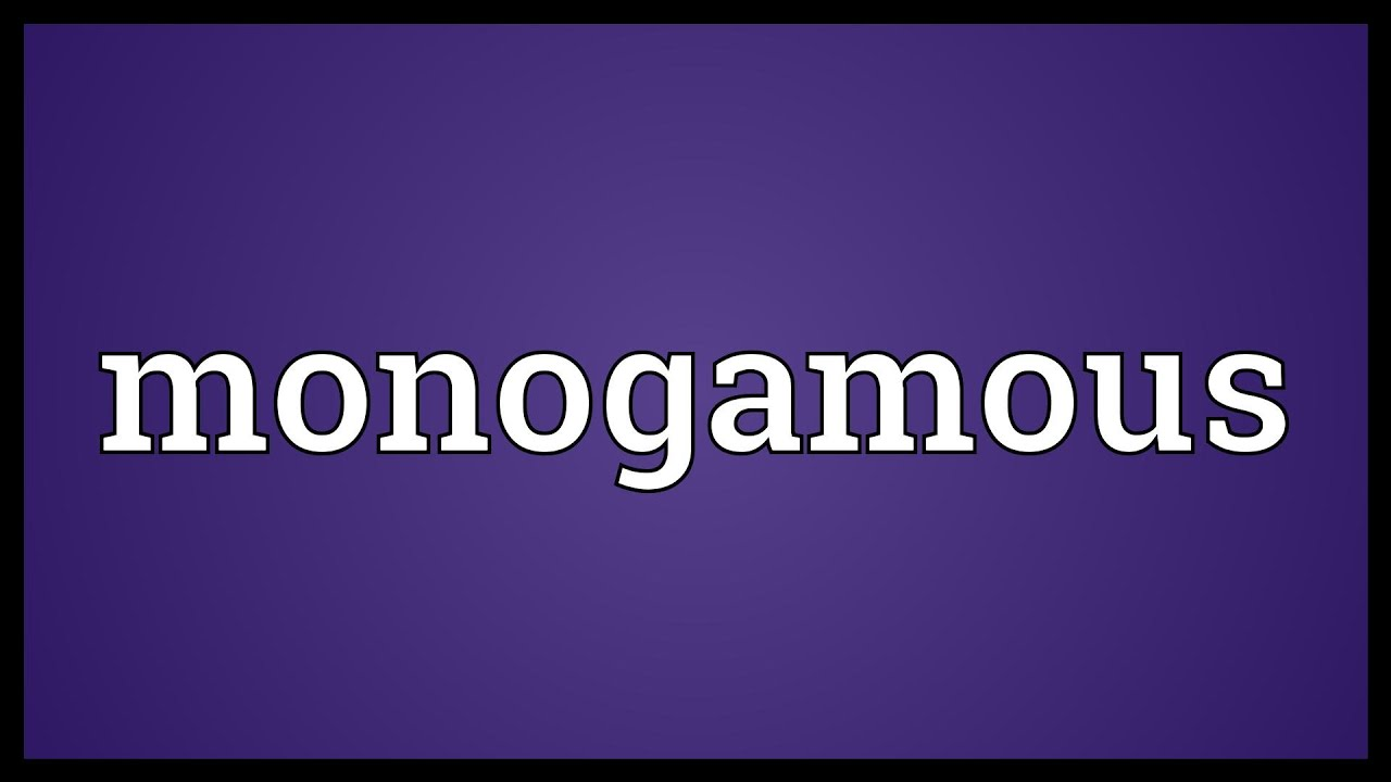 What is the meaning of monogamous