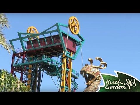Cobra's Curse at Busch Gardens Tampa Bay Florida!