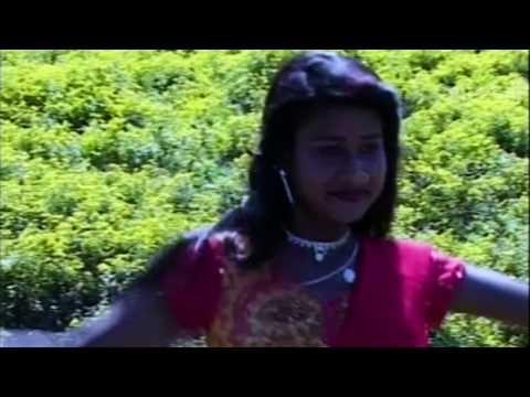 RANG RASIYA HAY RE MOR JAWARA - रंग रसिया हाय रे मोर जंवारा - Dilip Lahariya & Rajkumari Chauhan