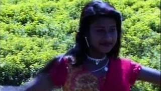 RANG RASIYA HAY RE MOR JAWARA रंग रसिया हाय रे मोर जंवारा Dilip Lahariya & Rajkumari Chauhan