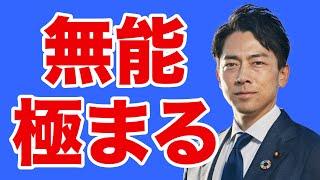 【セクシー大臣】小泉進次郎を総理にしたらダメな理由【WiLL増刊号#454】