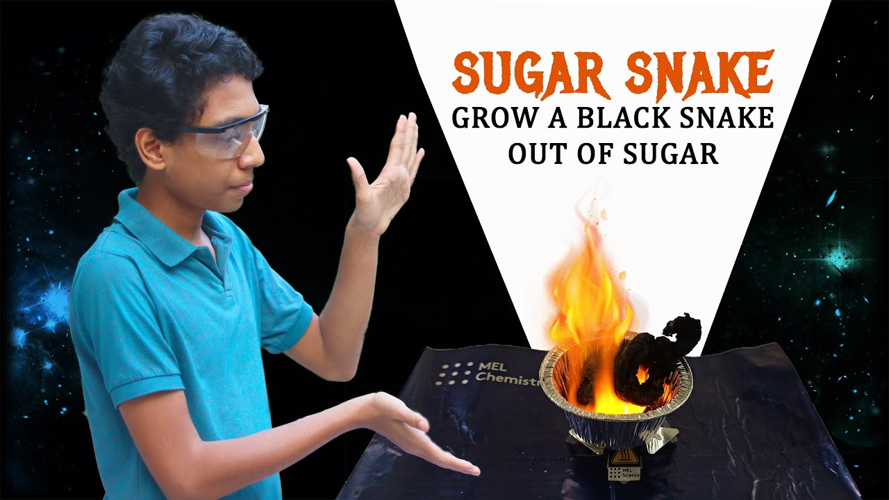 Sugar Snake Experiment | MEL Chemistry Lite Unboxing + Review
