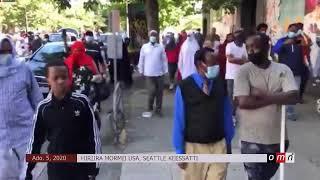 Hiriira mormii Seattle