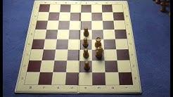 Schach lernen in 30 Minuten