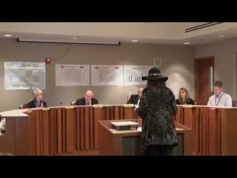 Residents Oppose WCRC Historic Tree Destruction & Land Seizures 2018 03 20