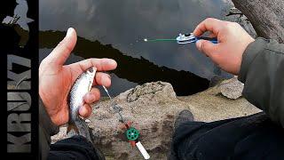 Ловля рыбы с Дерева Попытка поймать КАРАСЯ
