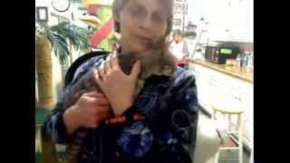 the new ch cat - Alma - 23.02.2014