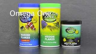 Favorite Fish Food Products
