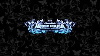 Swedish House Mafia - Valodja