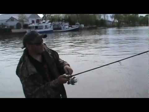 Fishing Walleye, Drum, Catfish In Dunnville Ontario