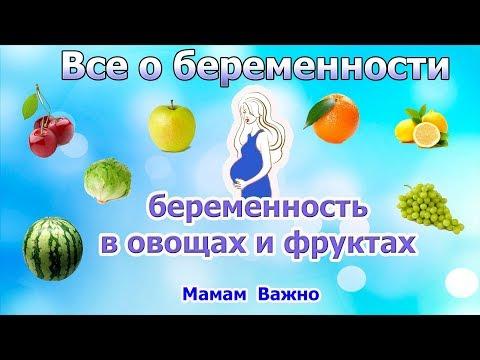 Беременность в фруктах и овощах