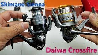 Spinning reel comparison  - Shimano Sienna vs Daiwa Crossfire