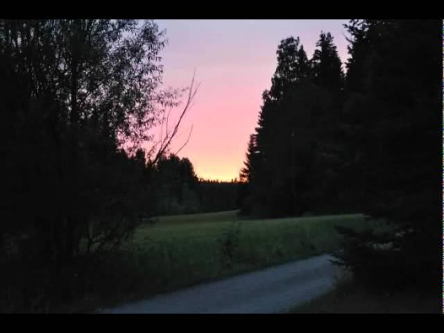 scandinavian-music-group-katu-paattyy-aurinkoon-wolfsolmu