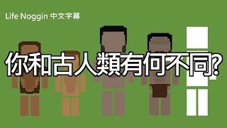 life noggin 你和古人類有何不同 中文cc字幕