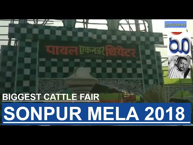 Sonpur Mela 2018 World Biggest cattle fair ?????? ???? ????? ??????? ???? Sonpur fair