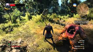 The Witcher 3: Hearts of Stone - Guarded Treasure: Level 36 Golem Battle, Igor De Sade Journal, Loot