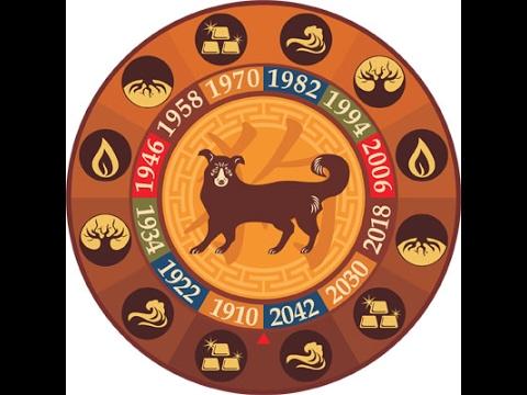 гороскоп на 2017 для рождённого в год собаки