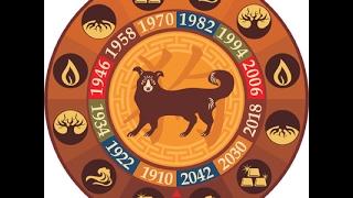 Собака. Таро прогноз на год Петуха 2017 для родившихся в год Собаки