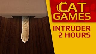 CAT GAMES INTRUDER 4K 60FPS VIDEOS FOR CATS TO WATCH 2 HOURS