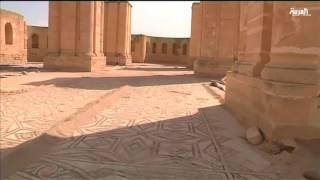 الكشف عن لوحة فسيفساء تعود للقرن الثامن الميلادي في أريحا