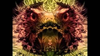 Ohm Mind - Birds Will Go To Heaven [Full Album]