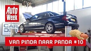 Van Pinda Naar Panda #10