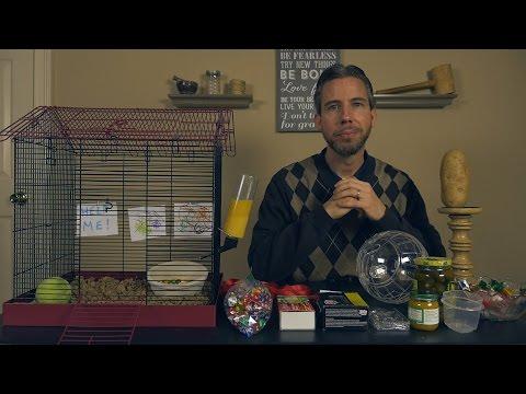 How to Care for a Pet Potato [ ASMR Tutorial ]