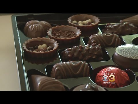 Scientists: Chocolate Producing Plants Facing Extinction By 2050