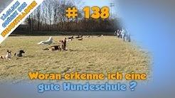 TGH 138 : Wie eine gute Hundeschule erkennen - Hundeschule Stadtfelle