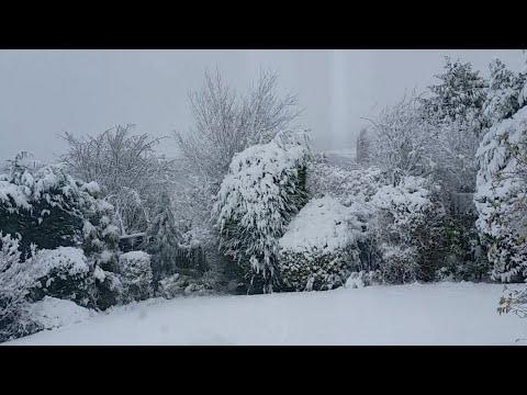 Snow UK Live Stream - It's snowing! - 8th December 2017