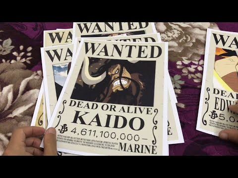 10 Poster Truy Nã One Piece Vua Hải Tặc Và Tứ Hoàng 150k   Đại Luffy