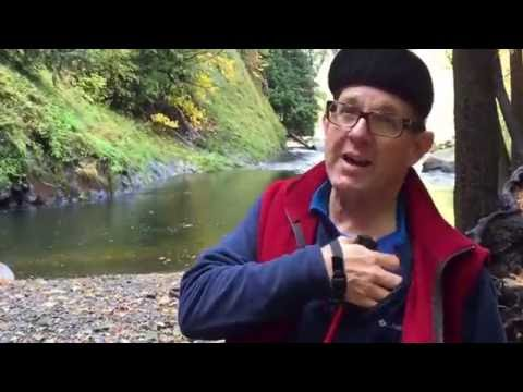 Day 6 part 5 Hike to Mossbrae Falls @ Dunsmuir