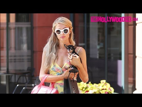 Paris Hilton Takes Her Dog Diamond Baby Out Makeup Shopping At Anastasia In Beverly Hills 6.19.18