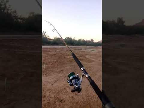 Tiro De 90 Mts ..ugly Stik Tiger Elite Jig Spinning Rod 7