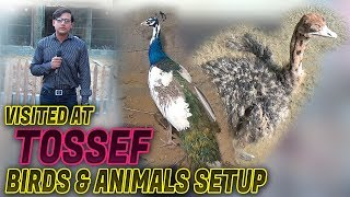 Visited at Toseef Farm house 2018 (Jamshed Asmi Informative Channel) In Urdu/Hindi