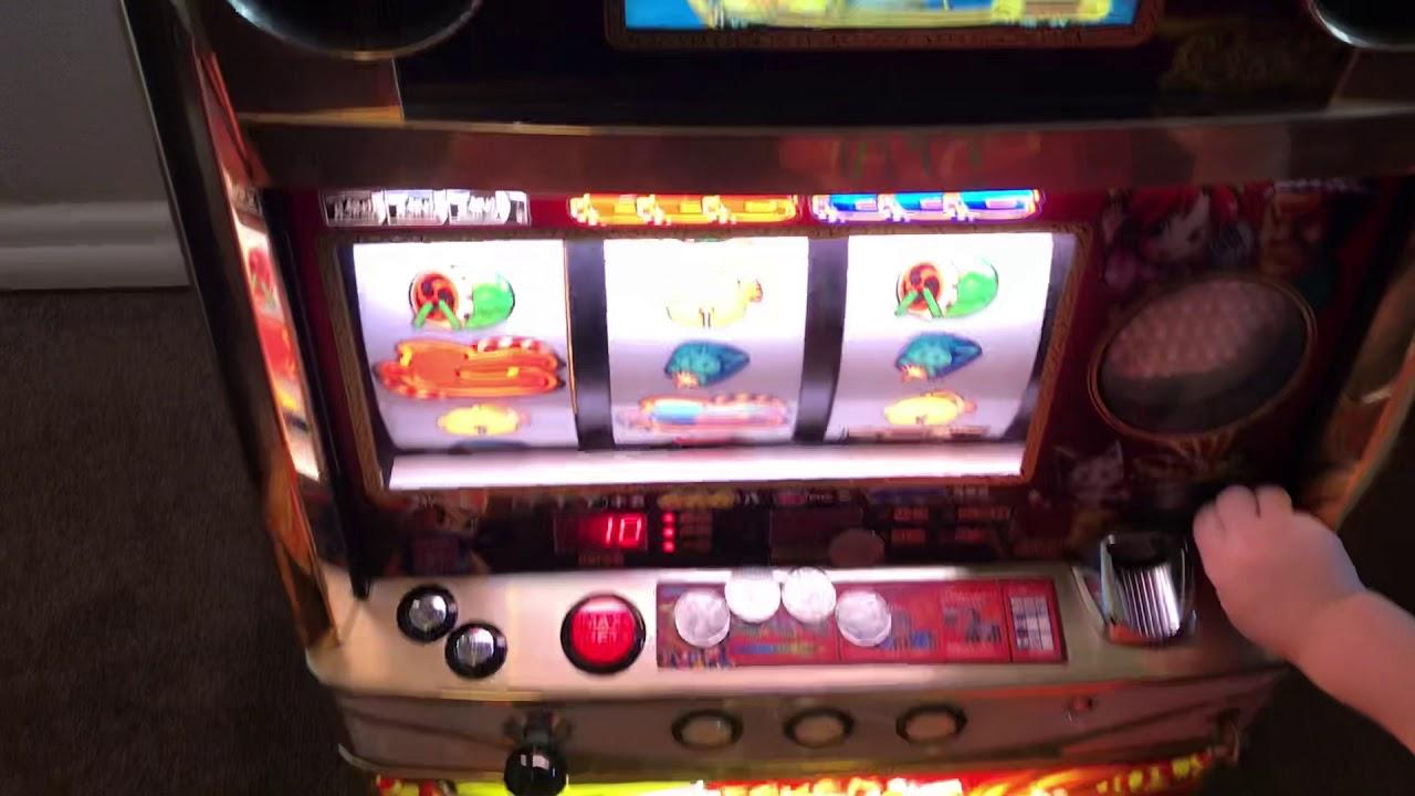 Slot Machines Kinds