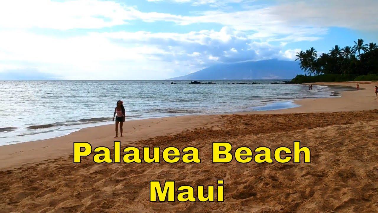 Palauea Beach Maui Aerial Shot Taken By DJI Spark Drone